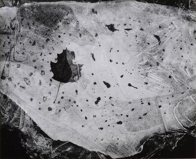 Paul Caponigro, 'Leaf in Ice, Nahant, Mass', 1958