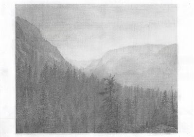Soo Young Song, 'Tree Lived in the Sierra Nevada – Sierra Nevada Drawn with a Pencil(series 12)', 2014