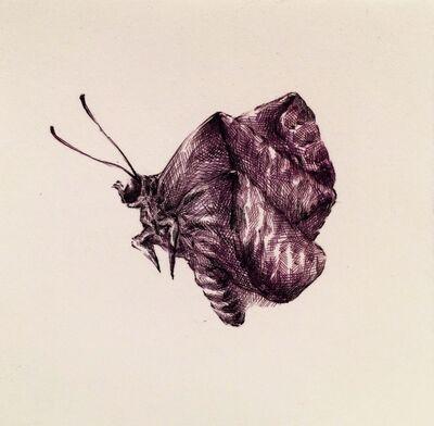 Joo Lee Kang, 'Insects #3', 2014