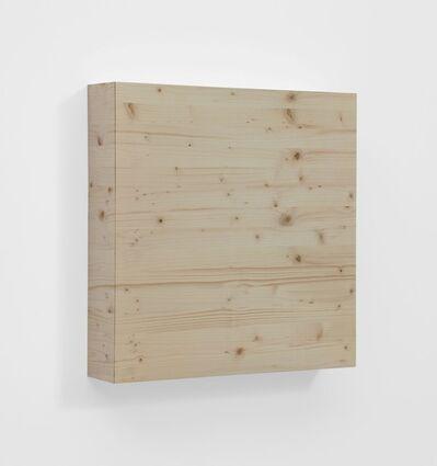 Elisa Sighicelli, 'Untitled (Wood)', 2012