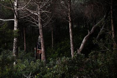 Augustin Le Gall, 'Bou Saadiya - la forêt', 2018