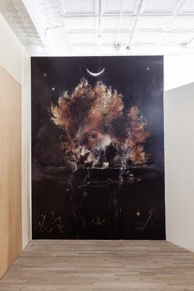Sam Pulitzer, 'Loosely Termed Image Scrim', 2014