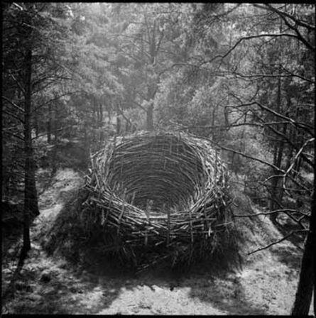 Nils Udo, 'Le nid à midi ', 1978