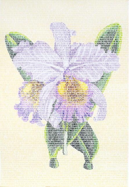 Juanli Carrión, 'Victoria Orchidaceae', 2014