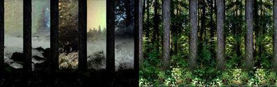 Matilda Aslizadeh, 'In a dark wood...', 2011
