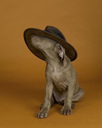 William Wegman, 'Hat's On', 2000