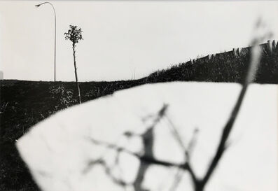 Ray K. Metzker, 'Pictus Interruptus', 1977
