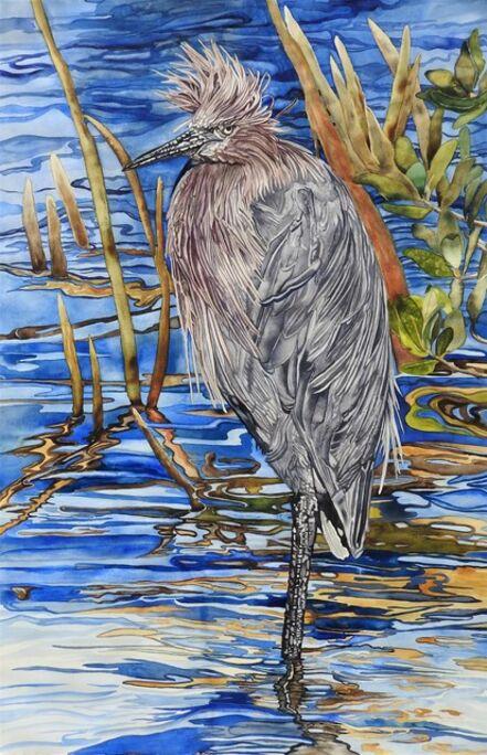 Carol Dawson, 'Wading: Reddish Egret', 2020