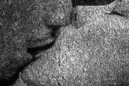 Eitan Vitkon, 'The Kiss, Thorn Series', 2014