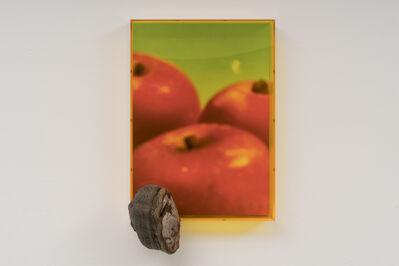 Saskia Noor van Imhoff, 'untitled (Malus d. 'Bellefleur')', 2020
