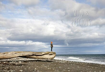 "Jesse Burke, '""Wild & Precious""', 2015"
