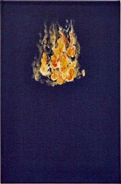 """Afonso Tostes, 'Fogo Mensageiro - SC - """"untitled  No. VII""""', 2016"""
