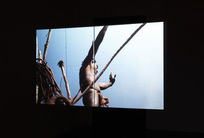 Camille Henrot, 'Coupé/Décalé', 2010