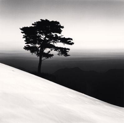 Michael Kenna, 'Mountain Tree, Danyang, Chungcheongbukdo, South Korea', 2011