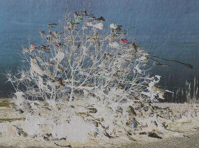 Ursula Mumenthaler, 'Paysage 16', 2014