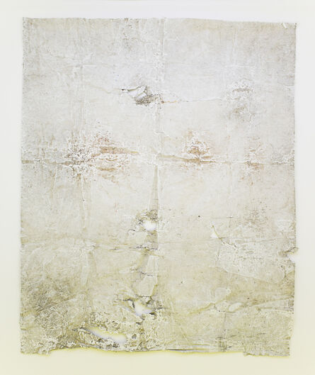Ian Kiaer, 'Paalen, Limp Oak, Tarpaulin', 2015