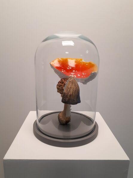 Carsten Höller, 'Multiple Mushroom Dome', 2019