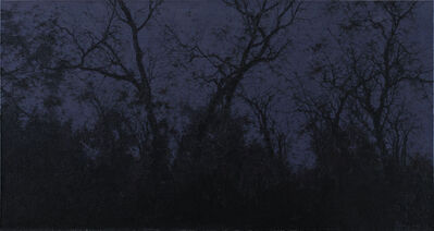 Pan Jian 潘剑, 'The Result of Shadows', 2012