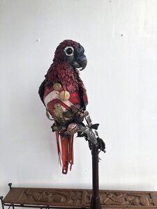 dotun popoola, 'Parrot ', ca. 2018