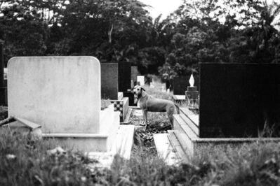 Tsen-Waye Tay, 'Epitaph II ', 2017