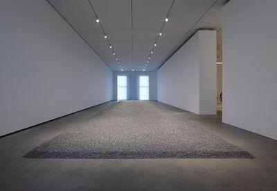 Ai Weiwei, 'Sunflower Seeds (15 tons)', 2010