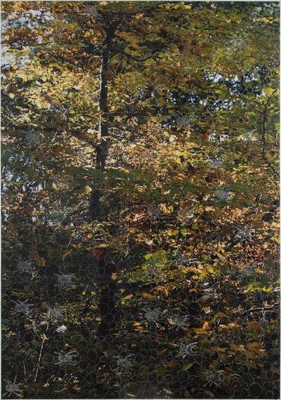Azade Köker, 'Autumn', 2017