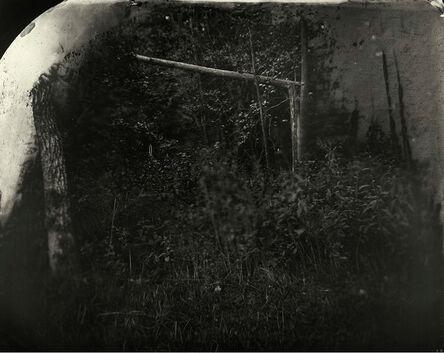 Sally Mann, 'Battlefields, Wilderness (Solarized Trees)', 2002