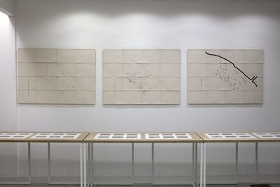 Marianna Christofides, 'RHINEPARK I, installation view', 2009