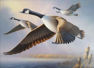 Ron Louque, 'Canada Geese', 2010