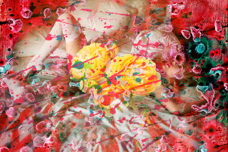 Leah Schrager, 'My Body is a Battlefield of Flowers', 2016