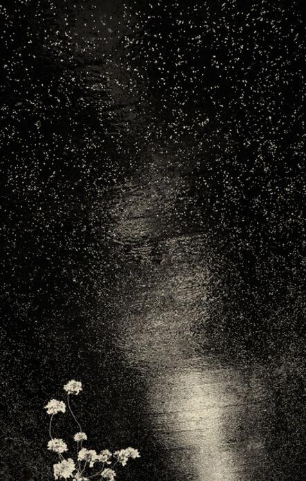 Albarrán Cabrera, 'The Mouth of Krishna. #166', 2013