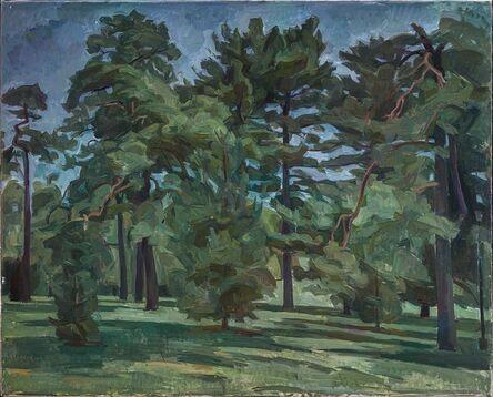 Wilbur Niewald, 'Pine Trees in Loose Park XIV', 2012