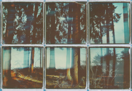 Ina Echternach, 'I lost myself in nature - Contemporary, Conceptual, Women, Polaroid, 21st Century, Nature, Future ', 2017