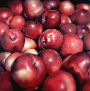 Ben Schonzeit, 'Winter Apples', 2009
