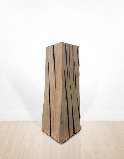 David Nash, 'Lined Beech Column', 2019