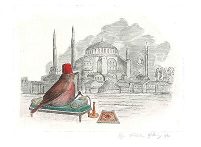 Bjorn Skaarup, 'Redwing, Turkey', 2016