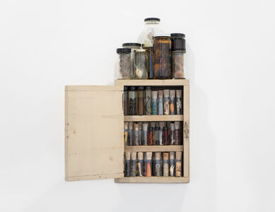 Mark Dion, 'Collection (Witch Cupboard)', 2020