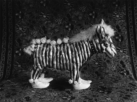 Michiko Kon (今 道子), 'Zebra and Japanese Socks (斑马和袜子)', 2010