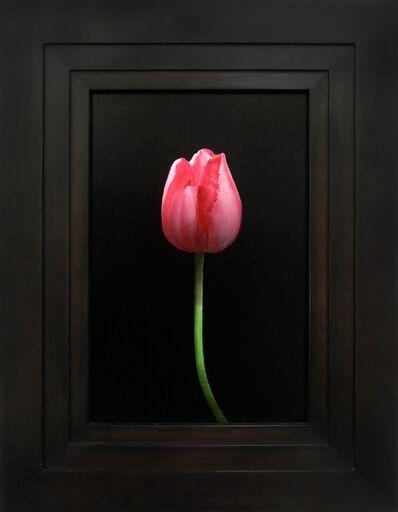 Michael Gregory, 'Pink Tulip', 2014