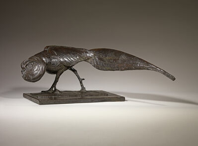 Albéric Collin, 'Golden Pheasant', ca. 1925