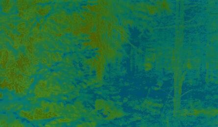Witho Worms, 'Sweden 065 YBB', 2013-2016