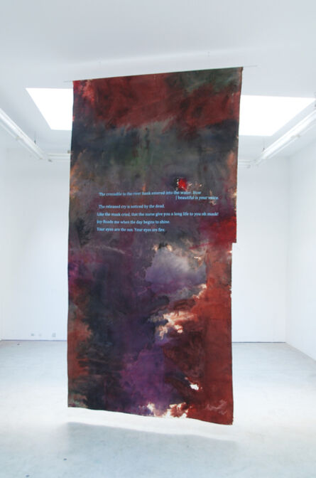 Hugo Canoilas, 'The released cry is noticed by the dead', 2013