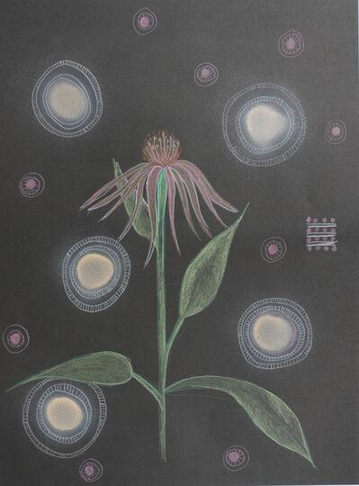 Anke Lohrer, 'Plant me a garden', 2018