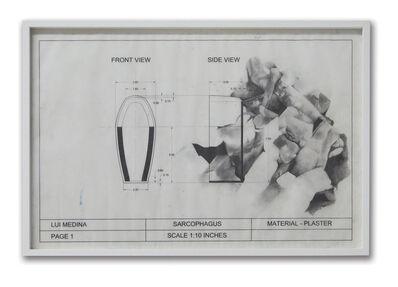 Lui Medina, 'Untitled (Natural History 8)', 2013