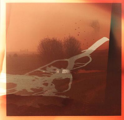 Dianne Bos, 'Flanders Landscape (Bomb Pond and branch)', 2014