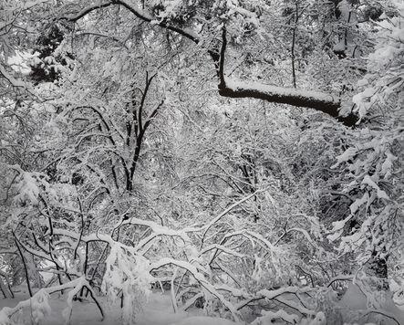 Ansel Adams, 'Fresh Snow, Yosemite Valley, California', 1947