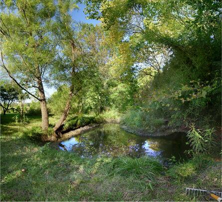 Anne Rowland, 'Pond at Hillbourne [Hillbourne, Bluemont, 2007]', 2007