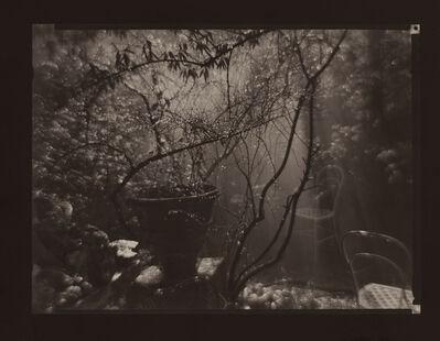 Josef Sudek, 'The Magic Garden (of architect Otto Rothmayer) During a Summer Shower', 1958