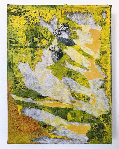 Allie Stabile, 'Acid Fields', 2020