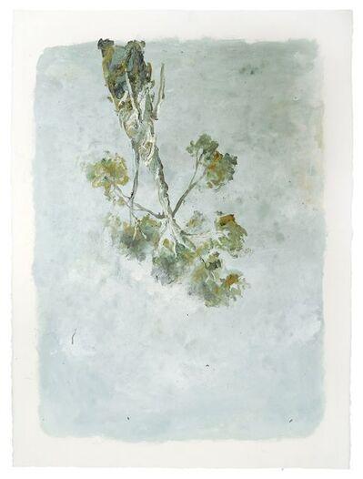 Eduardo Cardozo, 'Untitled', 2016
